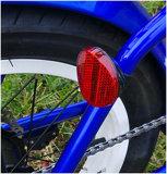 جيّدة يبيع درّاجة [فولدبل] كهربائيّة مع إطار سمين