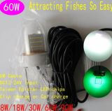 Eau profonde 50m DEL Fishing Lure Green Submersible Fishing Light 60W d'éclairage LED de Pond Fishing12V Underwater Fishing de nuit