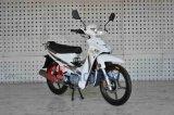 [جينشنغ] درّاجة ناريّة نموذج [جك110-19ف] [كب]