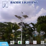 Réverbère extérieur traditionnel de LED (BDD45-46)