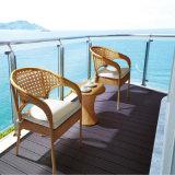 Jeu extérieur en osier de Tableau de patio de meubles de PE environnemental de bonne qualité avec l'assurance commerciale