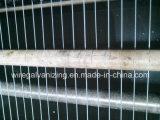 Equipamento da galvanização do eletro do fio de aço com o Ce certificado