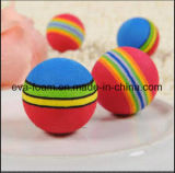 De kleurrijke Zachte het Ontspruiten van EVA Bal van de Kogel, de Kleine Bal van het Schuim van EVA, de Bal van het Stuk speelgoed