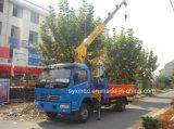 Dongfeng 3.2ton Smallest Crane Truck (EQ5110JSQ3)