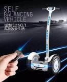 Hand Barの方法Two Wheels Self Balance Electric Standing Scooter