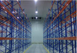 판매를 위한 상업 산업 찬 룸 또는 돌풍 냉장고