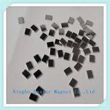 De kleine Magneet van het Blok van het Neodymium van de Grootte