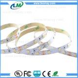 60LEDs/mのストリップflessibile adesiva/Tira LED/単一カラーLED滑走路端燈