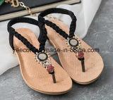 Sapatas do lazer das sapatas ocasionais das sapatas das sandálias das mulheres