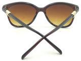 Fqp16239 продают солнечные очки оптом UV400 Elegent женщин способа качества