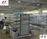 Ligne de production de machine à sac en tissu PP (SL-STL-II / 170)