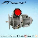 Motores flexibles trifásicos del motor síncrono del imán permanente con el gobernador de velocidad (YFM-100/G)
