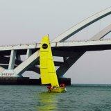 2017 Nuevo Modelo de fibra de vidrio del barco de navegación de China Hecho para la Formación Uso