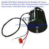 Motor ajustável da velocidade da variável sem escova da C.C. no exaustor e no condicionador de ar do trem