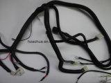 Elektrisches Auto-Draht-Verdrahtung u. Kabel