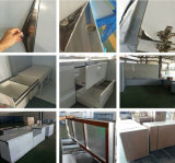 N&L BBQのラッカーステンレス鋼の屋外の食器棚