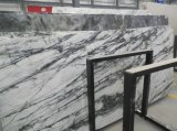 Novo produto Orchid Jade Polished Green Marble Tile