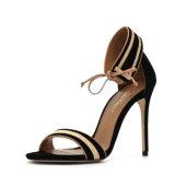 Il modo dei sandali dell'alto tallone delle signore merletta in su i sandali