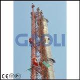 Grua magra da construção Scq200/200 para a chaminé da torre da ponte