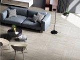 جديدة [إيتلين] تصميم إسمنت جير خشبيّة أرضية وجدار قرميد ([سن01])