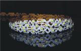 小型明るい文字で使用されるDC12VのS形LEDの適用範囲が広いストリップ