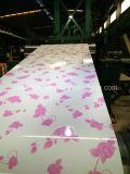 Напечатанный цвет Steelcoil, Prepainted Coated лист Aluzinc стальной