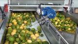 De volledige 1t/H Lopende band van het Vruchtesap