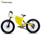 سمين إطار العجلة جبل درّاجة كهربائيّة مع [1000و] يعشّق محرّك في عمليّة بيع حارّ