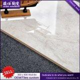 Foshan горячее продавая 300× плитка стены плитки Inkjet строительного материала 3D 900mm керамическая