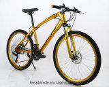 Bici de montaña popular del camino del carbón del buen precio (ly-a-85)