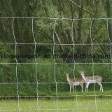 Загородка оленей загородки поля Sailin