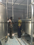 Cadena de producción completa arriba experimentada de leche con el embalaje de la bolsa