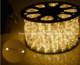 LED-Seil-Licht/im FreienLight/LED Streifen-Licht/Neonlicht/Weihnachtslicht/Feiertags-Licht/Hotel-Licht/Drähte des Stab-helle Umlauf-zwei wärmen weißen 25LEDs 1.6W/M LED Streifen