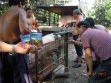 Ajustador do intestino de Unigrow para a criação de animais do porco
