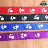 Os Cão-Pés de alta qualidade da Quente-Venda imprimiram o poliéster de 20mm/trela de nylon & o colar ajustável