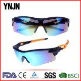 Ynjnの高品質の男女兼用の循環のスポーツのサングラス(YJ-A0290)