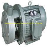 Magnetische Turbulenz-Pumpe/einzelnes Stadiums-freitragende Turbulenz-Pumpe/einzelnes Stadiums-direkte Turbulenz-Pumpe