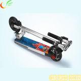 Новые продукты 200W 5 дюймов складывая электрический Bike Bike 6.5kgs 36V 4ah электрический с педалью