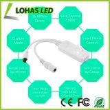 Indicatore luminoso di striscia astuto variabile di WiFi LED 5050 SMD per la decorazione
