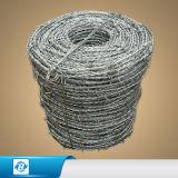 Загородка стального провода колючки Electro Galvanised/PVC /Stainless Concertina /Razor