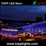 RGB LEIDEN van het Neon van pvc Flexibele Licht voor de Vervanging van het Neon van het Glas