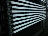 Ökonomisches T8 LED Gefäß hergestellt vom Glas