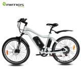 bicicleta eléctrica de gran alcance grande 750W para la venta