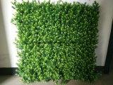اصطناعيّة [غرين بلنت] شاقوليّ عشب لوح جدار تعليق زخرفة