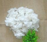 Fibra di graffetta di poliestere riciclata 7D*64mm per il giocattolo di riempimento del cuscino della trapunta
