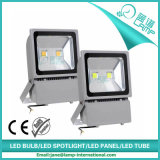 Luz de inundación de IP65 100W LED (WQ-FL-100W)