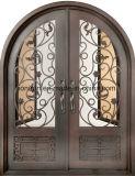Дверь входа фронта решетки ковки чугуна красивейшей обеспеченностью изготовленный на заказ