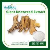 高品質の巨大なKnotweedのエキスまたはResveratrol 98%のプラントエキス