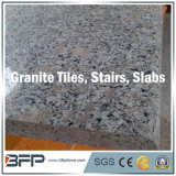 G603/654/G664/Rustyの灰色の黒く黄色く白く自然な大理石か花こう岩の平板