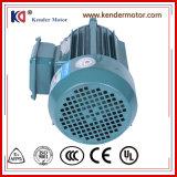 Motore asincrono di CA di IP55 50Hz/60Hz per il macchinario di alimento